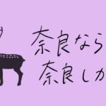 奈良なら奈良しか|vol.02 カフェに滝?癒やしの空間広がるカフェ~まほろば珈琲~